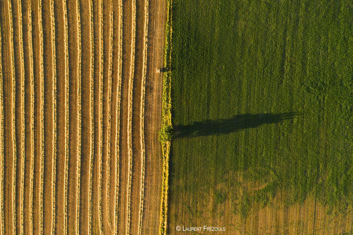 Photo par drone dans le Tarn. Graphisme dans les champs à Navès
